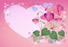 Spring background with cyclamens Stock Photo