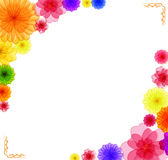 Spring background for the design of Colorful flowers Vector illustration Royalty Free Stock Photo