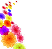 Spring background for the design of Colorful flowers Vector illustration Stock Photography