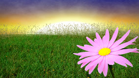Spring background with early evening sky. 3D render Royalty Free Stock Images