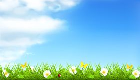 Spring background Stock Photos