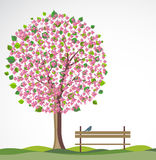 Spring background with flowering tree. Stock Photography