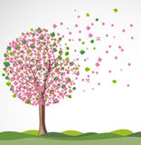 Spring background with flowering tree. Royalty Free Stock Photos