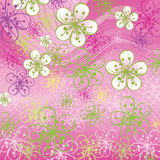 Spring background. Flowers on the abstract backgro Royalty Free Stock Photos