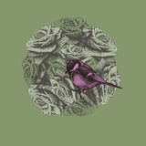 Spring background with flowers and bird titmouse, hand-drawing. Royalty Free Stock Photo
