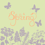 Spring background with flowers and butterflies. Stock Photos