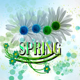 Spring. Background  with  flowers and decoration Royalty Free Stock Images