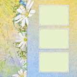 Spring background with flowers and frame Royalty Free Stock Image