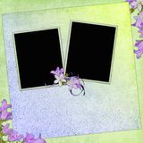 Spring background with flowers and frames Royalty Free Stock Photo