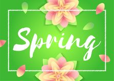Spring background. Flowers on green backdrop. Vector template for Mothers day flyers, invitation, sale poster or banner. royalty free illustration