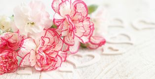 Spring background with flowers and hearts. On a white wooden tabe Stock Photos