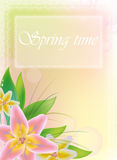 Spring background with flowers Stock Images
