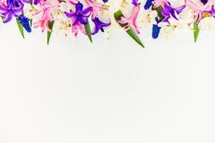 Spring background, flowers. stock photos