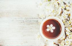 Spring background, flowers and tea. royalty free stock photography