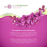 Spring Background For The Design Royalty Free Stock Photo