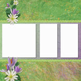 Spring background with frames Royalty Free Stock Photo