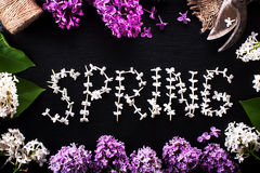 Spring background with fresh flowers lilac on a black background Royalty Free Stock Images
