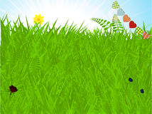 Spring background with grass and bunting Royalty Free Stock Photos