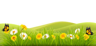 Spring background with grass, flowers and butterflies. Vector stock illustration