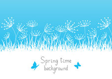 Spring background with grass Stock Image