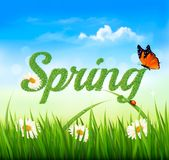 Spring background with grass, sky and a butterfly. Stock Image