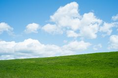Spring background, with grass. And sky Stock Photo
