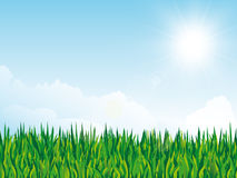 Spring background with grass texture and sun on cloudy sky Royalty Free Stock Images