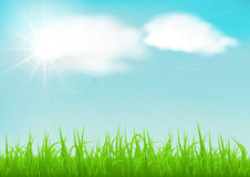 Spring background with green early spring grass on blurred soft background. Grassland blurred background with sun rays on blue cloudy sky. Vector illustration Royalty Free Stock Photography
