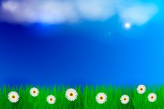 Spring background with green grass and blue sky. Place for text. Vector illustration Stock Image