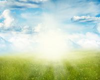 Spring background. Green meadow and blue sky spring background Stock Image