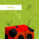 Spring background, ladybug. Spring background with abstract ladybug, grass and flowers Stock Image