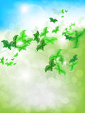 Spring Background with leaf Butterflies Stock Image