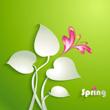 Spring background with leaves Stock Images
