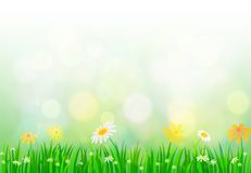 Spring background with light Stock Photos