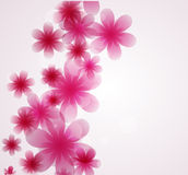 Spring background,. Spring background with many ping flowers Royalty Free Stock Photos