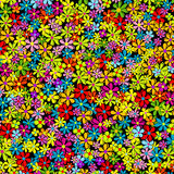 Spring background with multicolored flowers Royalty Free Stock Photo