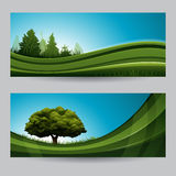 Spring background nature banner with tree Royalty Free Stock Photos