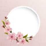 Spring background with pink cherry flowers Royalty Free Stock Images