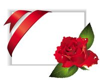 Spring background with ribbon and red rose Royalty Free Stock Photography