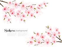 Spring background with Sakura japan cherry branch. royalty free stock photos