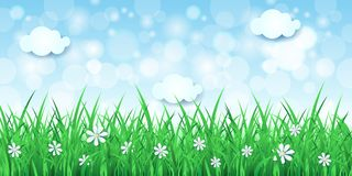 Spring background with sky and grass. Vector eps10 Royalty Free Stock Photo