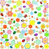 Spring background with small flowers and ladybugs. Spring flowers with leaves and ladybugs on white background Stock Image