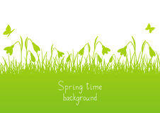 Spring background with snowdrops Stock Images