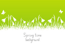 Spring background with snowdrops Royalty Free Stock Photo
