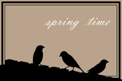 Spring background with sparrows Royalty Free Stock Photography