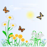 Spring background spring flowers and butterflies vector. Spring background spring flowers and butterflies place for text vector illustration Stock Photos