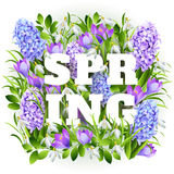 Spring on background with spring flowers. Vector. Spring on background with spring flowers Royalty Free Stock Photography