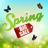 Spring background with sticker and butterflies Royalty Free Stock Photo