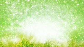 Spring background, summer backgrounds, grass. With green Bokeh Stock Photos