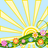 Spring background: sun and flower Stock Image